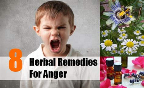 herbal remedies to help with anger problems picture 3