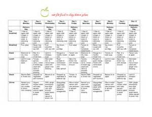 detox diet plans picture 13