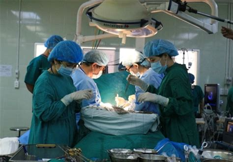 liver transplant hospitals in new jersey picture 3