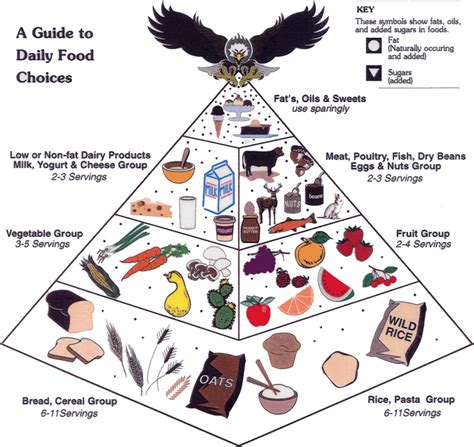 american indian diet picture 6