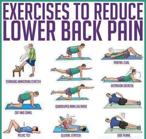 lower back pain picture 1