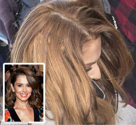 celebrity hair extensions picture 7