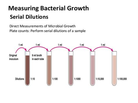 turbidity as measure of microbial growth picture 7