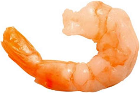 High cholesterol and shrimp picture 1