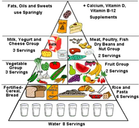 low salt and low cholesterol diet picture 13