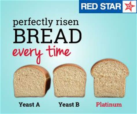 red star yeast conversion chart picture 9