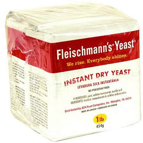fleishmanns active dry yeast no hangover picture 5