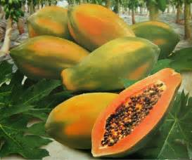where to order papaya injections picture 10