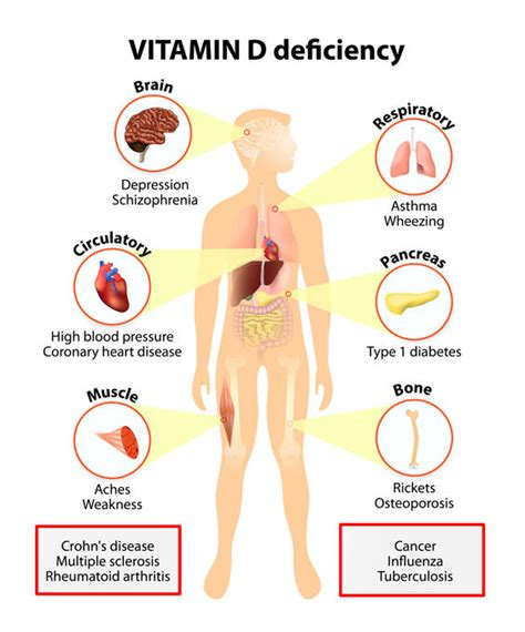 vit deficiency and cravings for smoking picture 1
