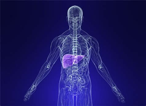 chemical and drug-induced liver disease picture 6