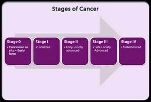 Stage iv prostate cancer timeline picture 13