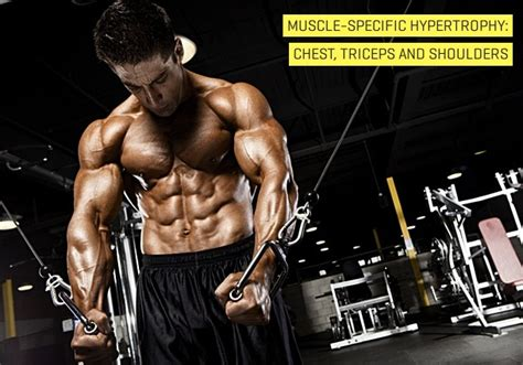 iib muscle training picture 14