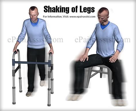 dog involuntary leg shaking picture 6
