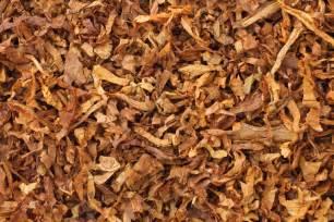 tobacco picture 6