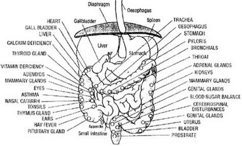 colon problems that raise ca19-9 levels picture 2
