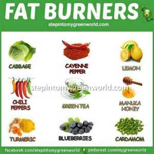 extreme fat burning foods picture 14