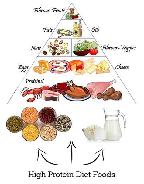 all protein diet picture 1