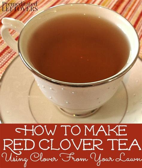 red clover tea in lusaka picture 17