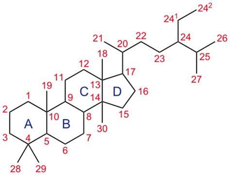 testosterone hormone wikipedia picture 1