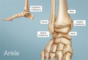 ankle joint pain picture 5