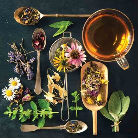 what tea to use to shrink thyroid picture 13