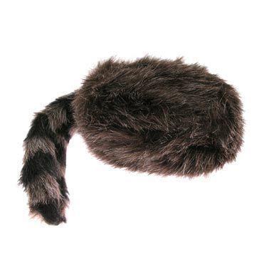 coon skin cap picture 7