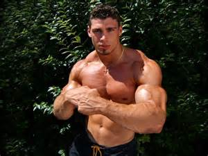 adonis muscle picture 3
