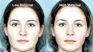 testosterone estrogen study picture 19