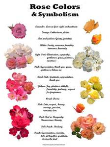 wiccan herbs and their meanings picture 14