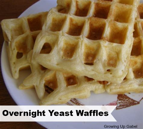 yeast waffles picture 11