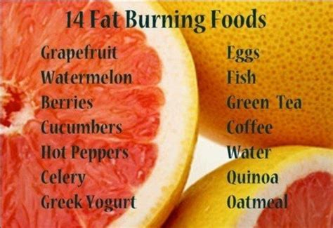 food and fat burning picture 9
