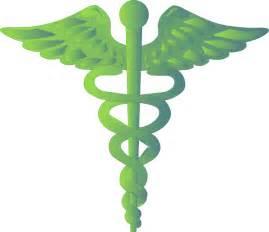 herbal medicine online pharmacy picture 1