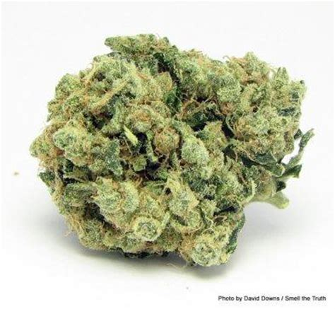 what strain of weed is good for skin picture 9