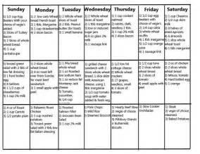 free diabetic diet plan picture 5
