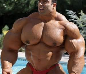 big male muscle picture 15