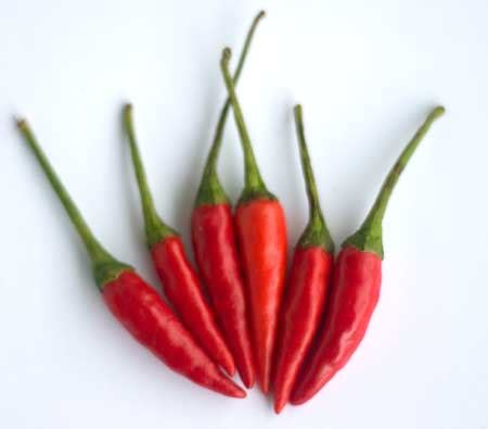 cayenne pepper weight loss picture 5