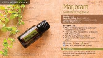 oregano oil to whiten your h picture 13