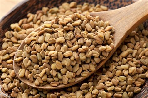 ancient herbals fenugreek picture 9