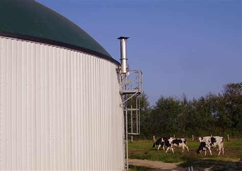 dictionary anaerobic digestion picture 5