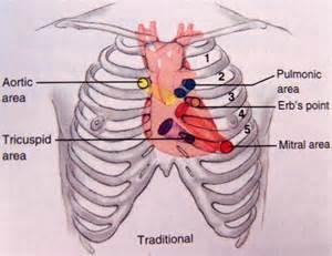 bare breast female auscultation picture 3