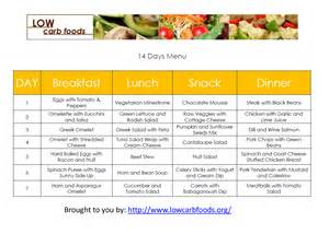 free low carb diet plan picture 6