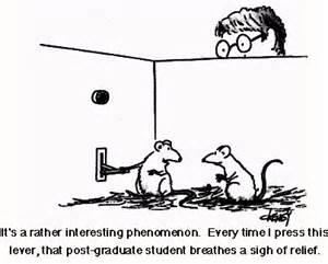 pheromones psychology definition picture 1
