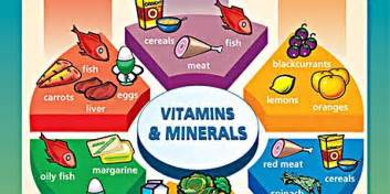 vitamins and minerals that can bring more blood picture 7