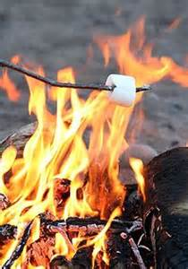 can marshmallows be toasted on the real flame picture 5