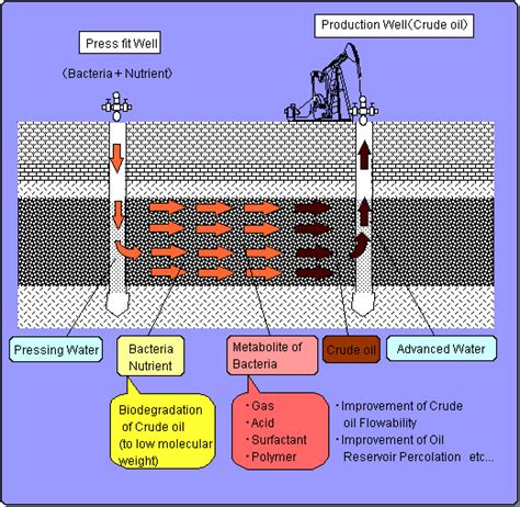 what is microbial enhanced oil recovery picture 2