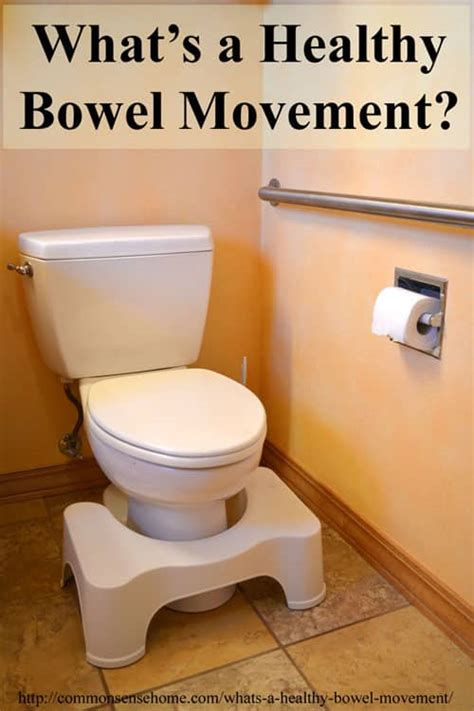 what's a regular bowel movement picture 6