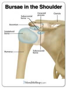 brown shawl-ligament procedure for knee joint picture 1