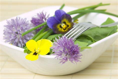 fennel tea for cellulite picture 18