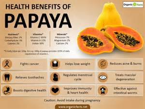 papaya enzyme for weight loss picture 3