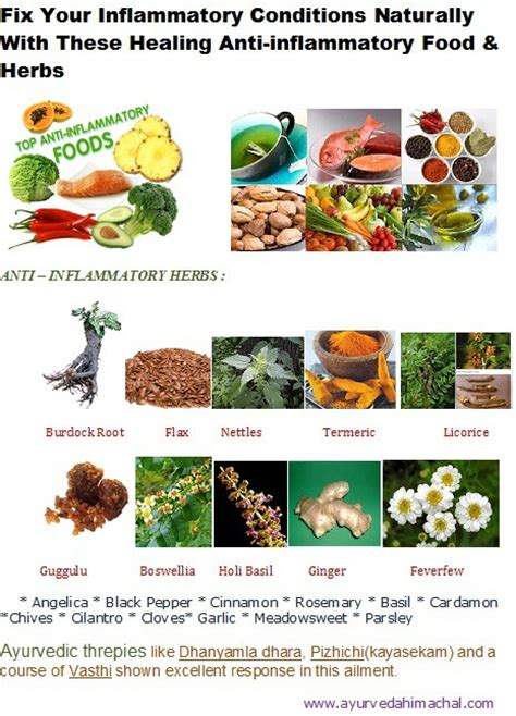 natural food and herbs for the capacity of picture 6